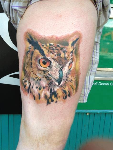 animal tattoo manchester 10 best images about dris donnelly on pinterest cas