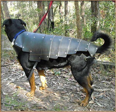armour dogs war hound armour armour leather ebay