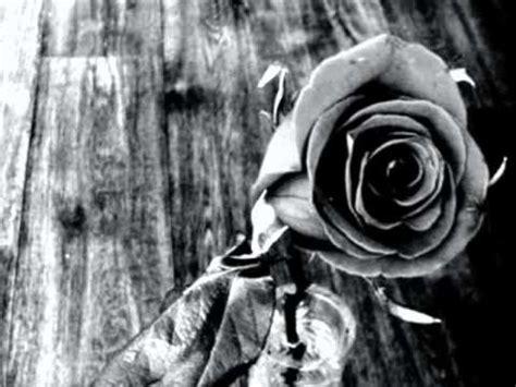 imagenes en blanco y negro de flores flores en blanco y negro cris 24 07 2012 youtube