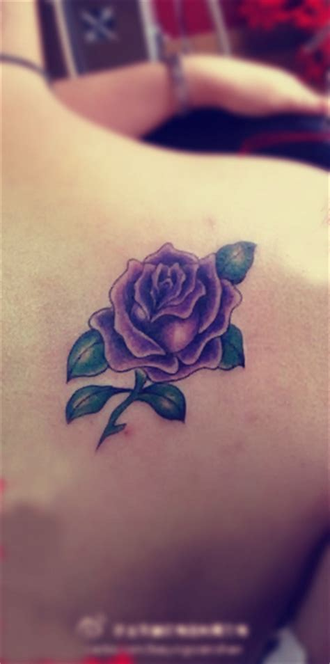 purple roses tattoos free designs flower tattoos