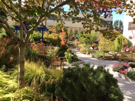Healing Garden by Therapeutic Landscapes Network Networkedblogs By Ninua