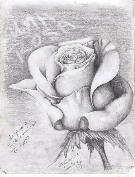 imagenes de rosas en 3d a lapiz una rosa a lapiz taringa