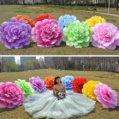 dance performance peony flower umbrella chinese  layer
