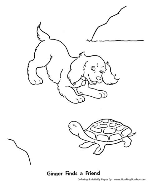 pet turtle coloring page fresh water turtle colouring pages
