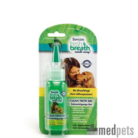 puppy teething gel tropiclean fresh breath puppy clean teeth gel bestel