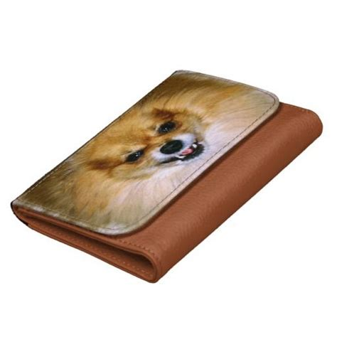 mad pomeranian wallet mad marley pomeranian fur pomeranians dogs and fur