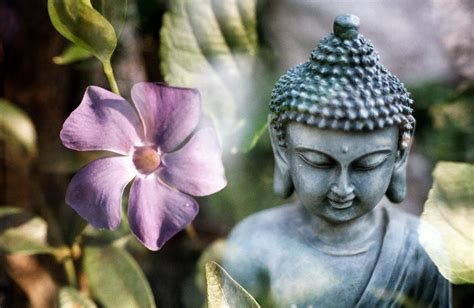 the dharma of modern mindfulness discovering the buddhist teachings at the of mindfulness based stress reduction books 15 of the best meditation techniques in buddhism for