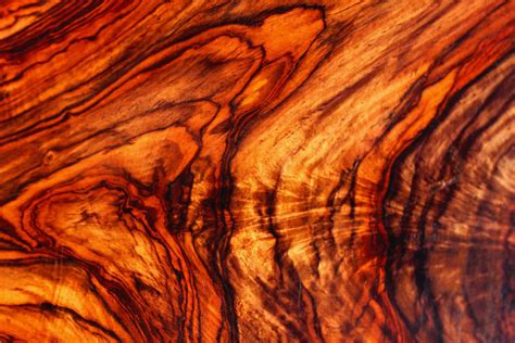 cocobolo wood for sale cocobolo savage woods