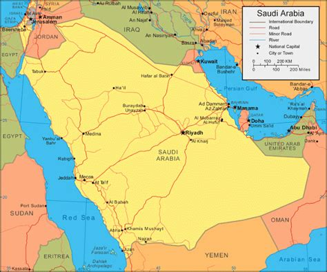 Saudia Square Plain birds of saudi arabia saudi arabia