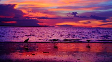world most beautiful beaches most beautiful beaches in the world sunset www pixshark