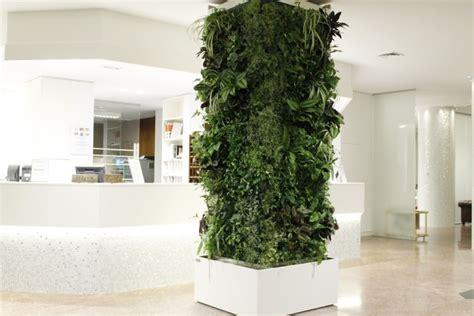 giardini verticali in casa giardini interni e pareti in verde verticale