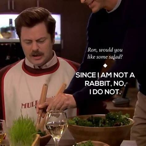 swanson quotes swanson quotes parks and rec things that make me