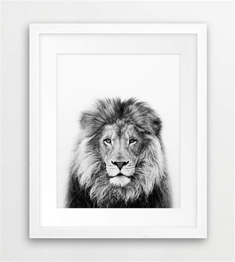 lion print lion print lion wall art safari african animal lion photo
