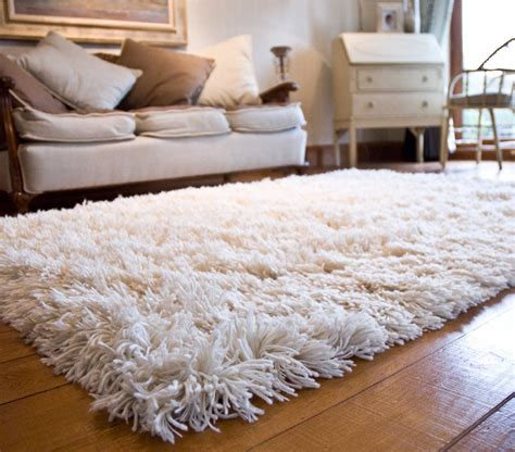 Fuzzy White Area Rug White Fuzzy Area Rug Best Decor Things