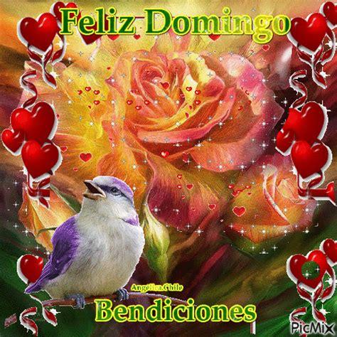 imagenes feliz domingo con rosas feliz domingo con im 225 genes de peluches con movimiento