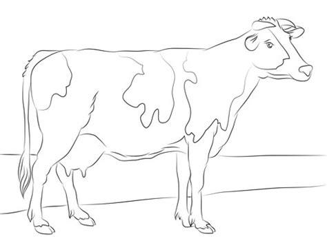 cow ears coloring page vaca dibujo para colorear elegant dibujo de una vaca para