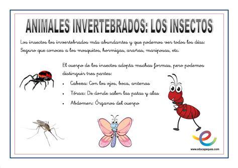 poemas de insectos para ninos animales invertebrados fichas ciencias naturales
