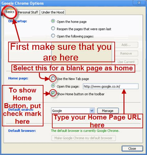 softsystemware how to set home page in chrome