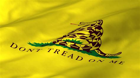 gadsden flag wallpaper wallpapersafari