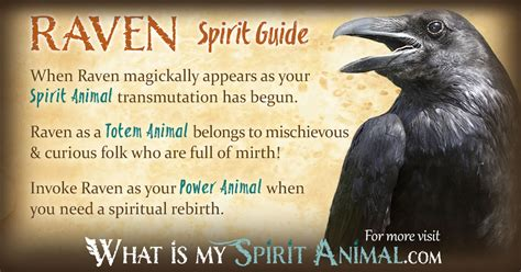 difference between american spirit colors symbolism meaning spirit totem power animal