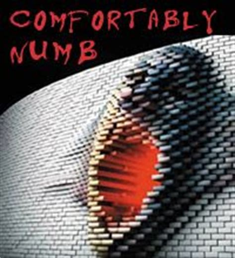 comfortably numb covers 1000 images about comfortably numb on pinterest pink