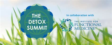 Summit Detox by The Detox Summit Was A Smash Hit Dr Soram S