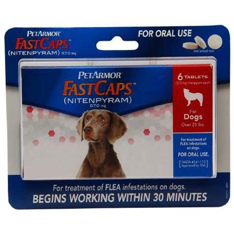 best flea pill for dogs best flea treatment for dogs pills drops shoos sprays
