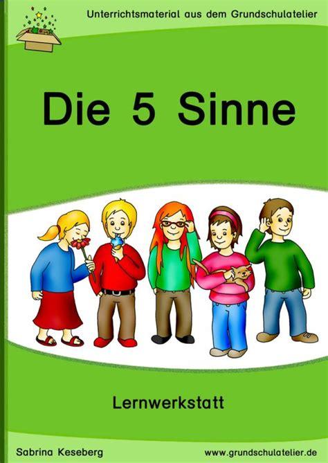 werkstatt 5 sinne best 25 5 sinne ideas on 5 sinne aktivit 228 ten