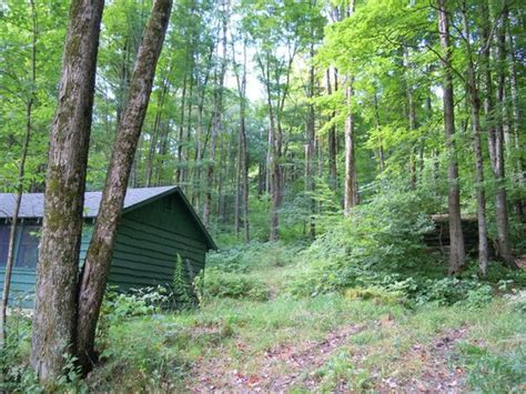 Allegany State Park Cabin Pictures by Tower Picture Of Allegany State Park Cground Salamanca Tripadvisor