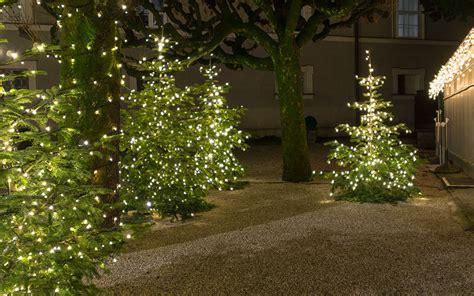 evergreen tree light wrap best outdoor lights for your garden david domoney