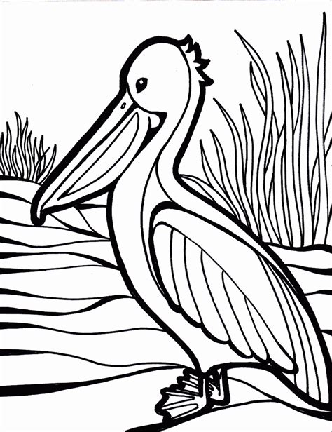 Coloring Now 187 Blog Archive 187 Bird Coloring Pages Coloring Pictures For