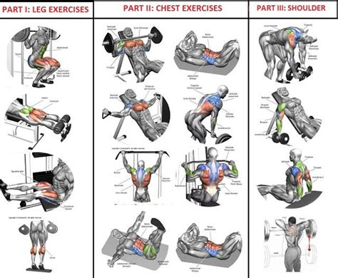 10 sets of 10 reps workout program for building bodybuilding exercise workout