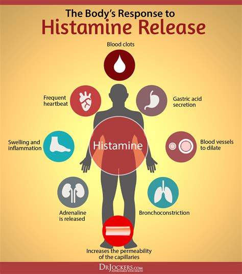 Detox Symtoms Or Histamine Response by Are You Suffering From Histamine Intolerance Drjockers
