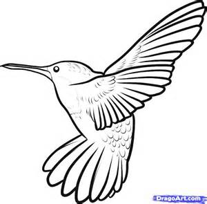 bird drawing images collections hd gadget windows mac android