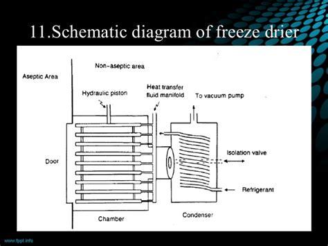 freeze drying phase diagram freeze drying