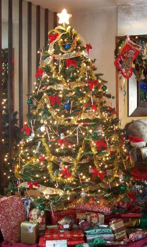images of christmas tree wiki best christmas tree