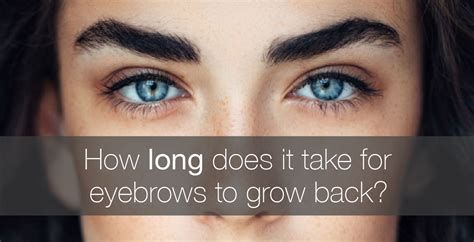 how to get your hair back to its color how does it take for eyebrows to grow back amalie