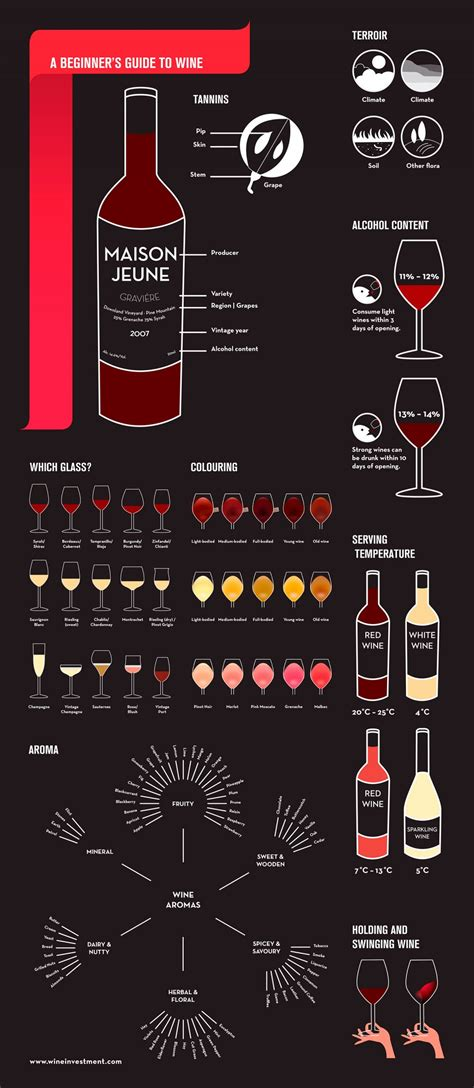 infographic   day   sound   wine expert