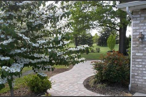 residential landscaping services residential landscaping services
