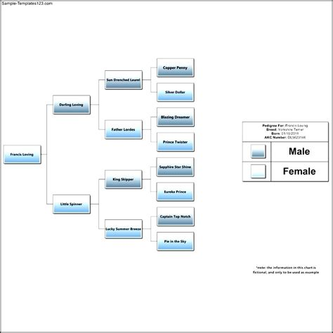 dog pedigree chart template sle templates