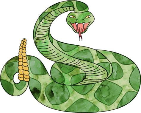 rattlesnake clipart rattlesnake png transparent free images png only
