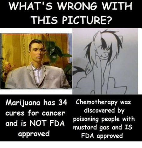 Chemo Meme - what s wrong with this picture marijuana has 34