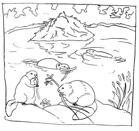 free coloring pages pond animals ausmalbilder biber malvorlagen ausdrucken 1