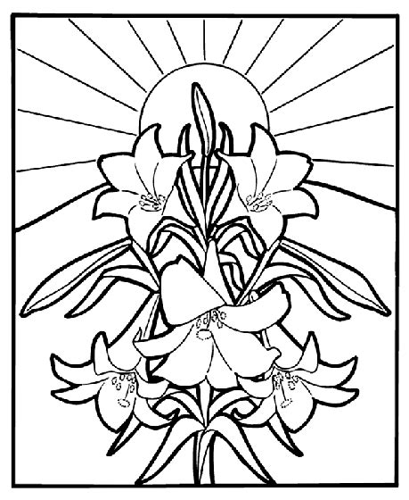 crayola coloring pages flowers easter lilies coloring page crayola com