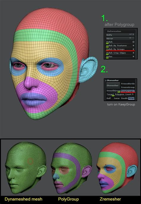 zbrush 4r6 zremesher tutorial topology pinterest it s pretty useful polygroups zremesher tip