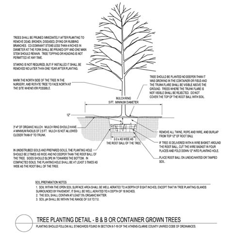 Tree Planters Notes by Resources For Designers Athens Clarke County Ga