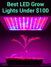 Best Grow Lights by 25 Best Ideas About Best Led Grow Lights On