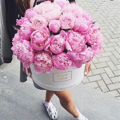 instagram pinkpeonies 1000 ideias sobre pe 244 nias no pinterest flores d 225 lias e