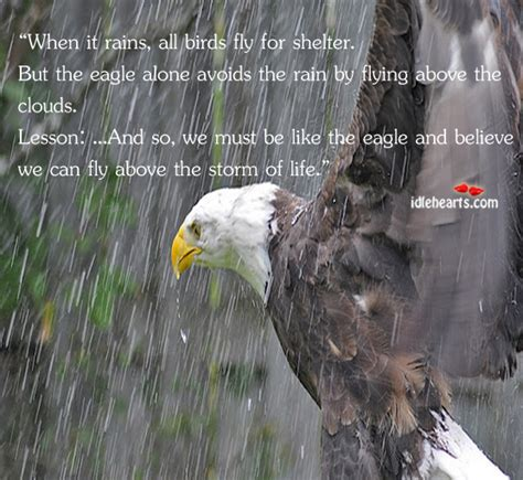 storm of eagles the be like an eagle and believe that you can fly above the storm
