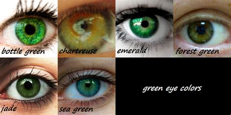 green eye color green memes image memes at relatably